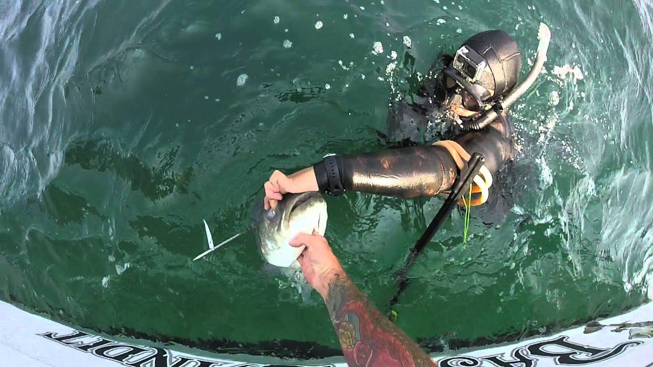 Spearfishing Charter Long Island
