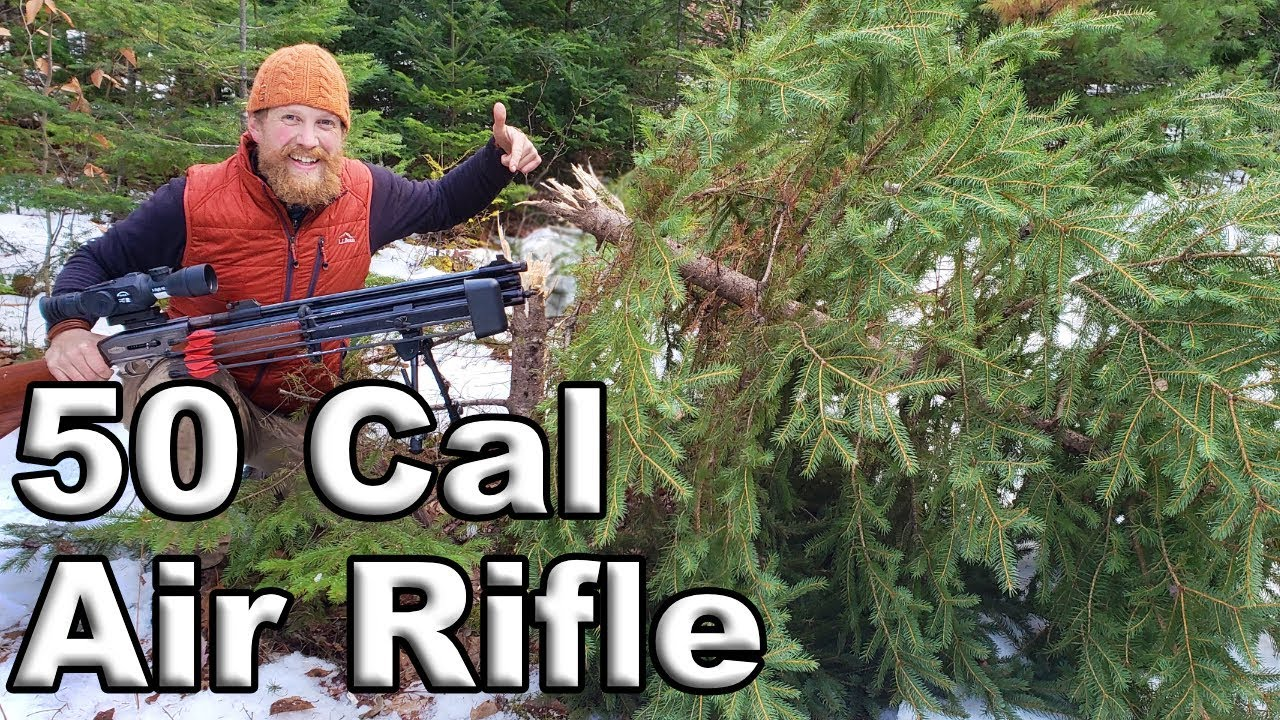 Christmas Tree Hunt With The 50 Cal Dragon Claw Air Rifle
