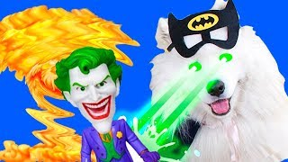 Batman Dog and Ladybug Vs Joker: Superheroes Roblox Kids Challenges in Real Life