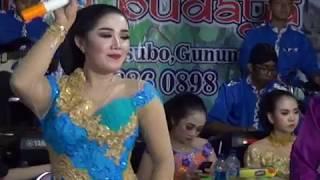 Single Terbaru -  Jamilah Jamilun Dangdut Koplo Ojo Nguber Welase