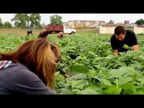 Urban Conversion: Farm to Table Featuring Special Guest, Jack Johnson