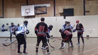 Amazing Goals - Surrey Giants vs. Pacific Jaguars (12/06/14) Ball Hockey