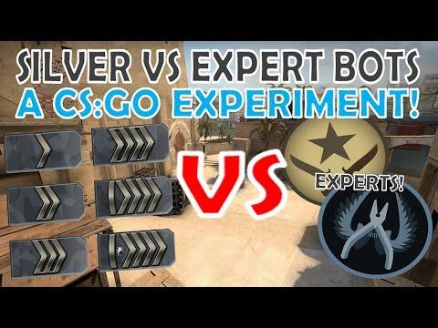 Silver Rank VS Expert BOTS!   A CS:GO Experiment