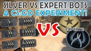 Silver Rank VS Expert BOTS! | A CS:GO Experiment