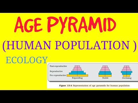 Ecology ||ORGANISM AND POPULATION|| (AGE PYRAMID)