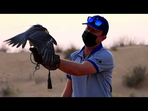 Rub al Khali desert Dubai / Пустыня Руб-эль-Хали, Дубай