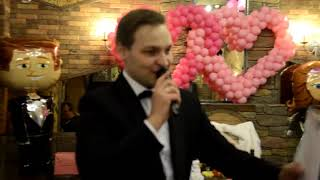 Ведущий, тамада на свадьбу. Ди-джей и поющий аккордеон.