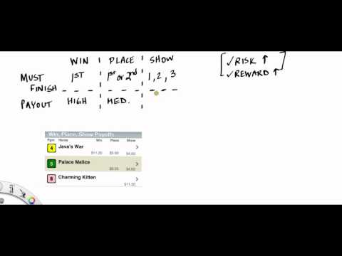 How to Bet Horses - Win, Place, Show Basics