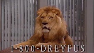Dreyfus Talk To The Lion