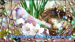 Красивое поздравление с Вербным Воскрееньем!