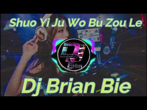Shuo Yi Ju Wo Bu Zou Le 說一句我不走了 Remix By Dj Brian Bie