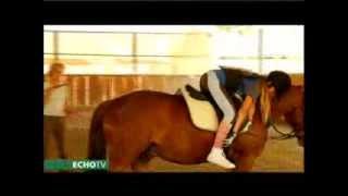 A futószártól a biztos lovaglásig