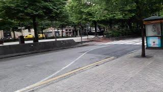 Tranquilidad en las calles de Pamplona en un nuevo día de confinamiento