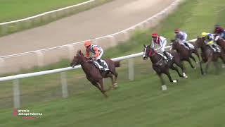Vidéo de la course PMU PREMIO ARKUPE TABERNA