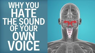 Why You Hate The Sound Of Your Own Voice