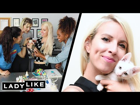 We Learn How To Foster Kittens From A Professional Kitten Lady  Ladylike