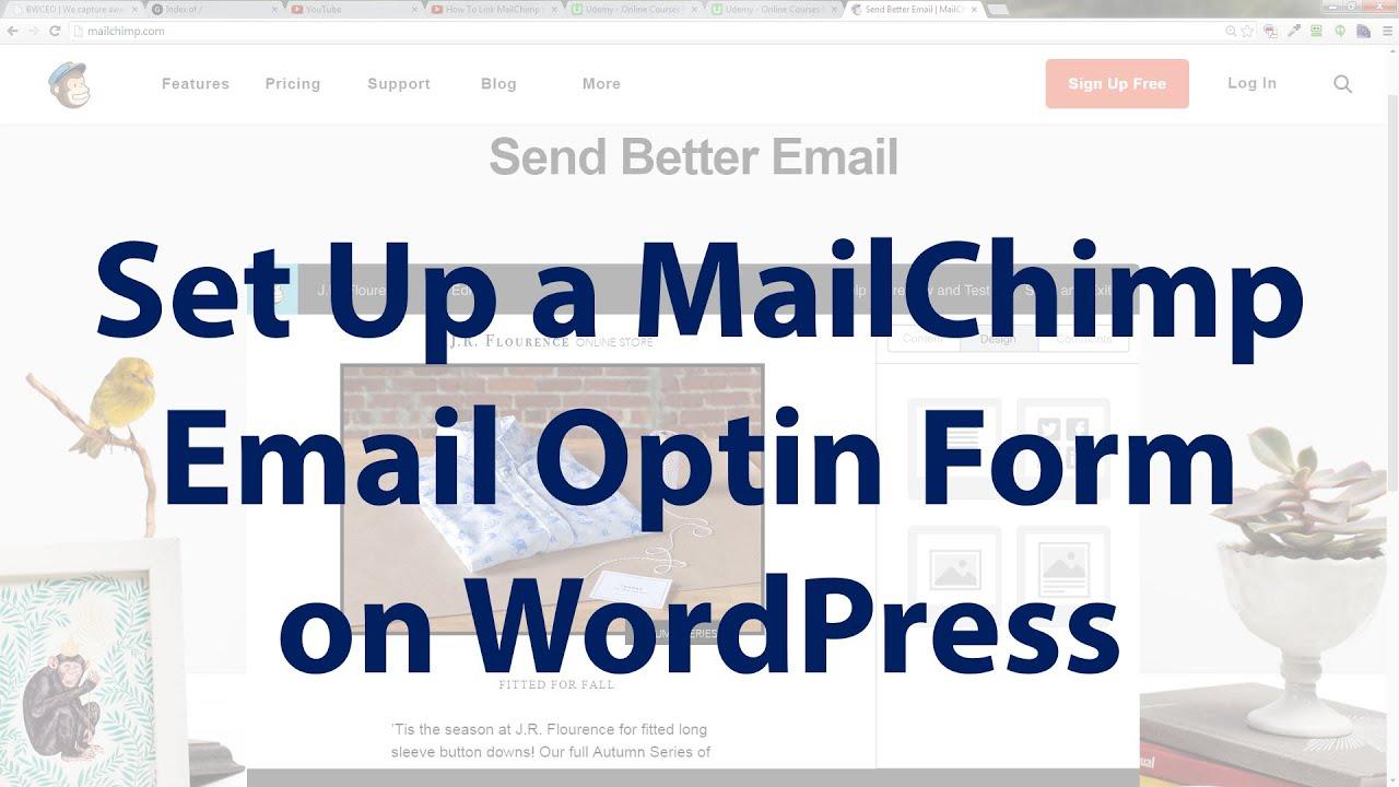 how to add mailchimp to wordpress