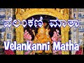 Download Velankanni Matha MP3 song and Music Video