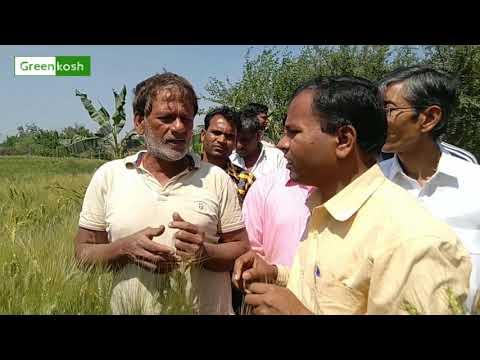Tarachand Belji visited organic farm in Delhi - Palla Village