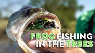 FROG Fishing In THICK Trees w/ Jon B & Lunkers!