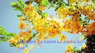 Phoolon Ka Taron Ka Sabka Kehna Hai Instrumental With Lyrics