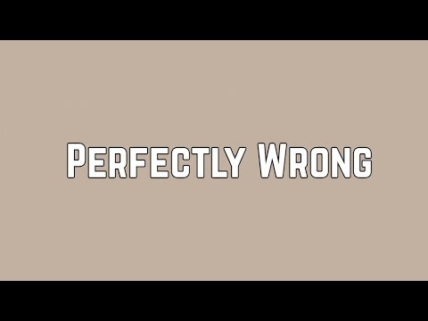 Shawn Mendes - Perfectly Wrong (Lyrics)