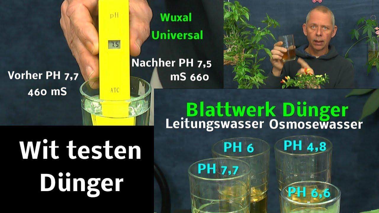 Top Pflanzen Düngen im Experiment mit Mikrosiemens und PH Wert messen KP38