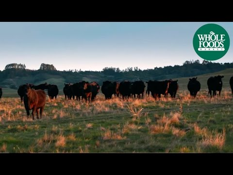 Grass-fed Beef | Love Local | Whole Foods Market