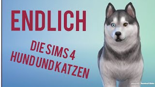 ENDLICH - DIE SIMS 4 HUNDE UND KATZEN - Let's Play The Sims 4 Cats and Dogs