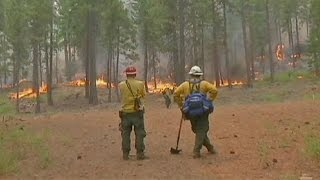 Terjed a kaliforniai erdőtűz