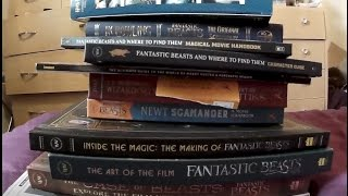 Fantastic Beasts Book Haul and Rated Review - What to get for christmas?