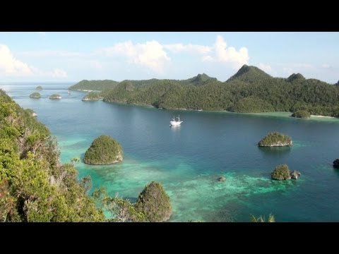 Raja Ampat, Papua, Indonesia - Diving the Most Bio-Diverse Reefs on the Planet