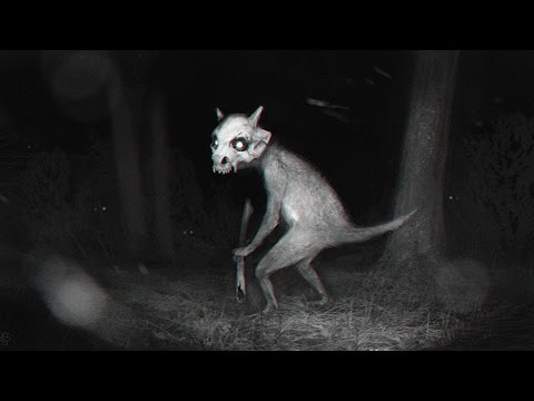 5 casos Escalofriante de Pokemon Go  Curiosidad Vital  Omares Tal Cual