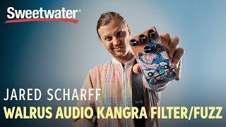 Walrus Audio Kangra Fuzz Pedal with Jared Scharff from SNL