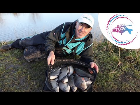 Alan Scotthorne: How To Feed For Commercial Silvers.