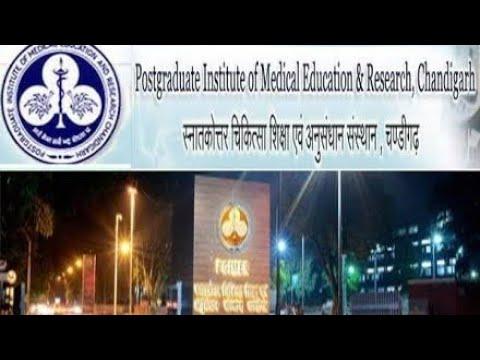 Pgi Lab Report Online