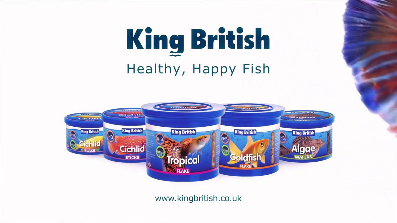 King British  Copos para peces