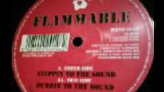 Flammable - Steppin into the Sound