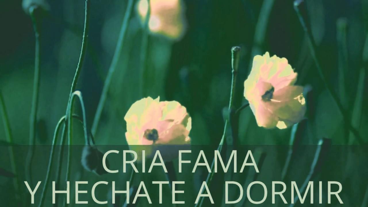 Dichos Paisas Y Refranes Colombianos Video Mensajes Para Ti Video Mensajes Para Ti Dowigoma