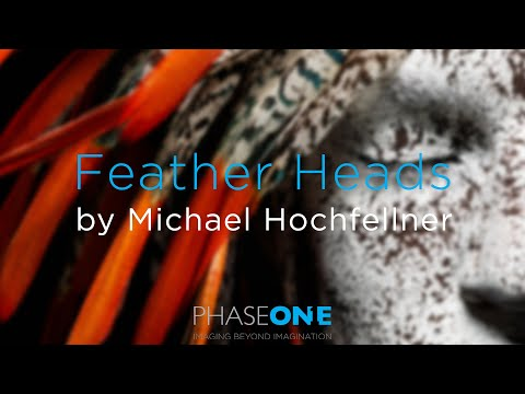 Feather Heads by Michael Hochfellner | Phase One