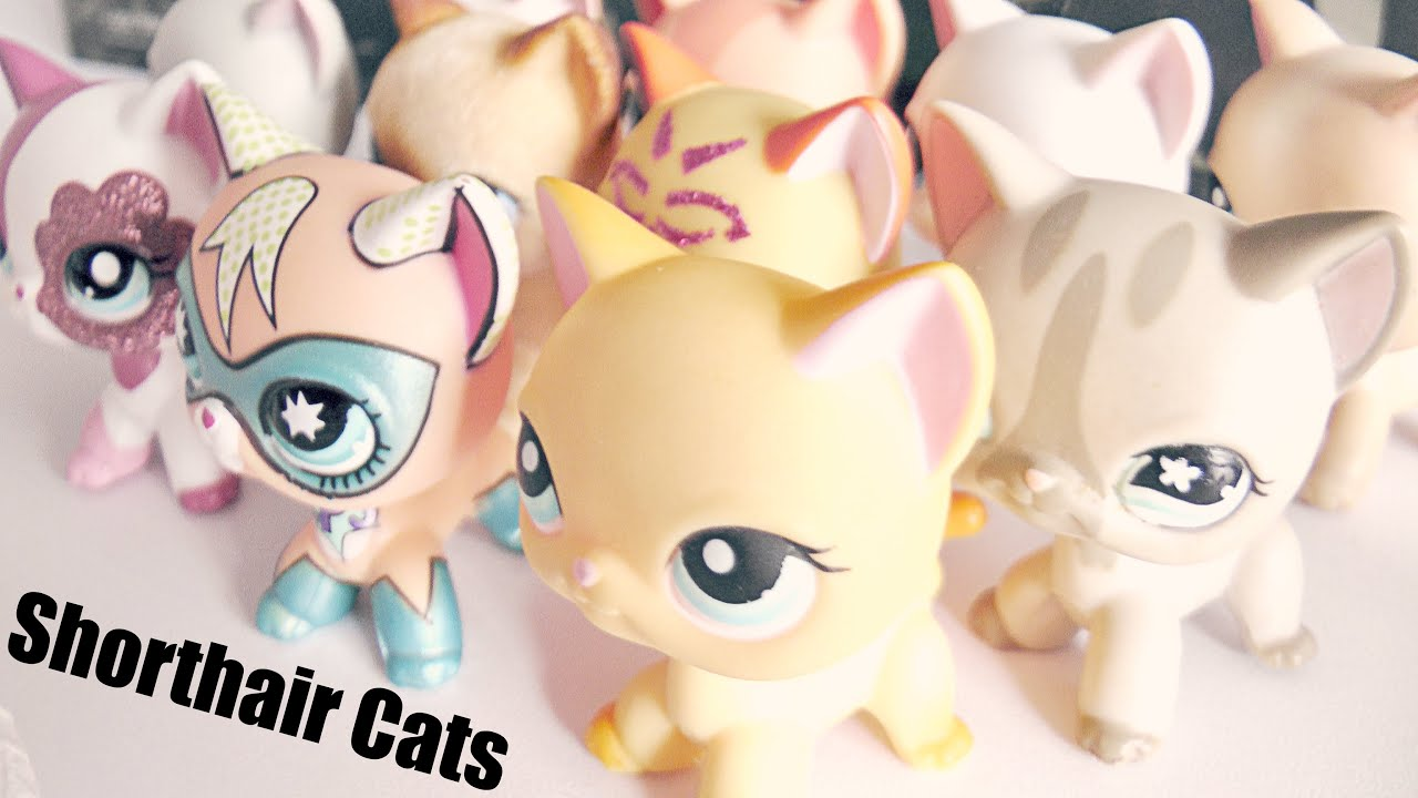 All My Lps Shorthair Cats Lps Shorthair Cat Collection Youtube