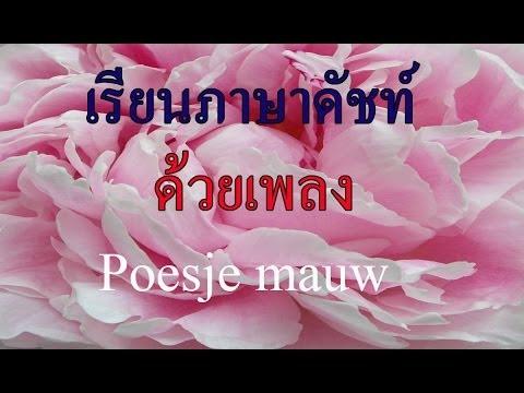 Dutch for Thai Poesje mauw แมวน้อยเอ๋ย (10/14)