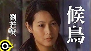 劉若英 René Liu【候鳥 Migratory bird】Official Music Video