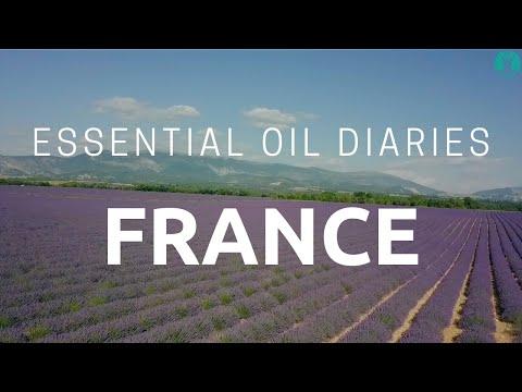 essential-oil-diaries---france