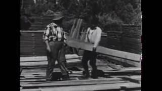 The sawmill  (Лесопилка) 1922 немая комедия