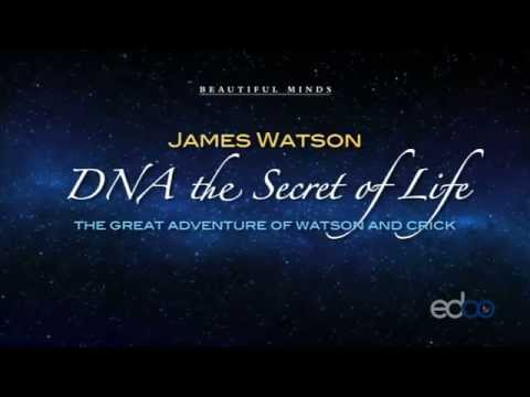 DNA and the secret of life - James Watson
