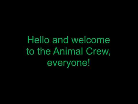 Welcome to my Channel, Everyone! - The Animal Crew