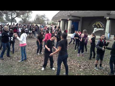 Valley Oak flash mob 2014 (happy)