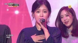 티아라 (T-ARA) - TIAMO (띠아모) (Comeback Week Mix) 무대모음