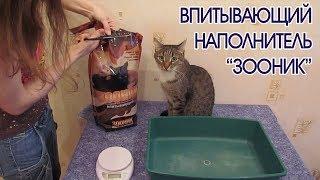 Наполнитель для кошачьего туалета ЗООНИК | Тест и мнение эксперта Кузи | Кот на горшке